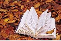 常州英语培训机构:如何提高英语学习能力